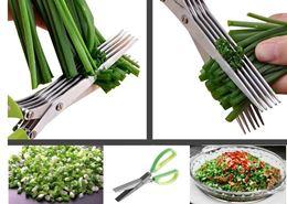 תמונה של מספרי ירקות